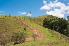 Paisagem bonita do verão com a estrada na montanha de Tailândia Fotos de Stock Royalty Free