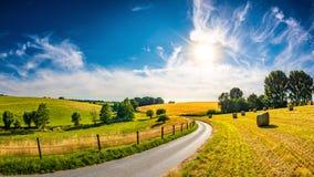 Paisagem bonita do verão com sol brilhante Fotos de Stock Royalty Free