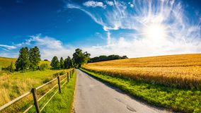 Paisagem bonita do verão com sol brilhante Fotografia de Stock Royalty Free