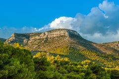 Paisagem bonita do verão com uma montanha Fotografia de Stock