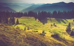 Paisagem bonita do verão nas montanhas Foto de Stock Royalty Free