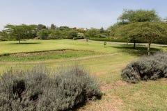 Paisagem bonita em Arusha, África Imagem de Stock Royalty Free