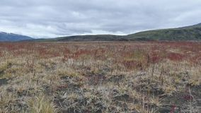 Paisagem bonita que caminha a fuga do laugavegur em Islândia filme