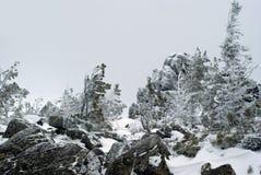 Paisagem borrada do inverno em um platô da montanha Foto de Stock
