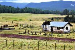 Paisagem branca da reserva de Apache das montanhas, o Arizona, Estados Unidos imagens de stock royalty free