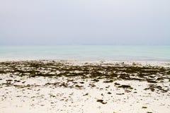 Paisagem branca das águas da praia e da turquesa Imagem de Stock Royalty Free