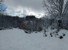 Paisagem branca incrível do inverno fotos de stock royalty free