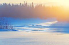 Paisagem brilhante do inverno Fotos de Stock