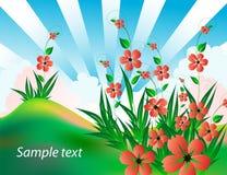 paisagem brilhante do verão com flores vermelhas ilustração stock