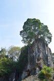 Paisagem cênico da montanha de Tailândia imagem de stock