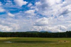 Paisagem cênico de Elkton, Virgínia em torno do nacional de Shenandoah Imagens de Stock Royalty Free
