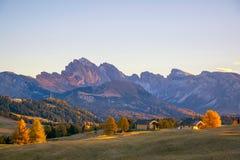 Paisagem cênico do outono nas montanhas com o larício amarelo backlighted, Alpe di Siusi, cumes da dolomite, Itália imagens de stock royalty free