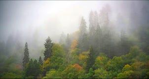 Paisagem cênico do parque nacional de Great Smoky Mountains foto de stock