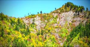 Paisagem cênico do parque nacional de Great Smoky Mountains imagem de stock