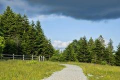 Paisagem cênico em Grayson Highlands fotos de stock