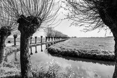 Paisagem cênico holandesa típica com uma fileira das árvores ao longo do rio fotografia de stock