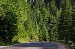 Paisagem cênico nas montanhas dos Carpathians fotografia de stock royalty free