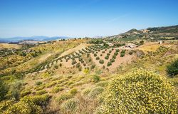 Paisagem cênico perto de Malaga, a Andaluzia, Espanha imagem de stock royalty free