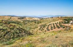Paisagem cênico perto de Malaga, a Andaluzia, Espanha fotografia de stock royalty free