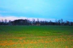 paisagem, campo recentemente cultivado com fundo a exploração agrícola e um céu azul bonito fotos de stock royalty free