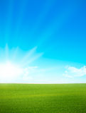 Paisagem - campo verde e céu azul Imagens de Stock Royalty Free