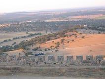 Paisagem característica árida do Alentejo com suas árvores de cortiça portugal Fotos de Stock