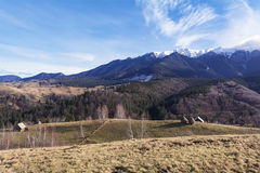 Paisagem Carpathian Imagem de Stock Royalty Free