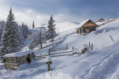 paisagem Carpathian do inverno Imagem de Stock
