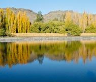 Paisagem central de Otago no verão imagem de stock