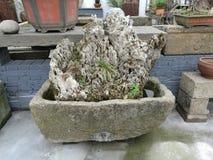 Paisagem chinesa do jardim Fotos de Stock Royalty Free