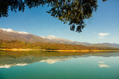 Paisagem clara do lago da montanha atrás de um rancho da árvore de cedro Imagem de Stock
