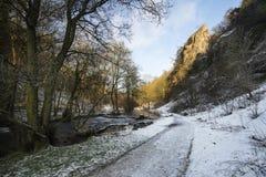 Paisagem coberto de neve correndo através do inverno do rio na floresta va Foto de Stock