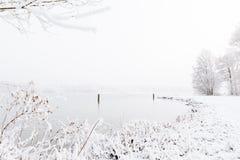 Paisagem coberto de neve do inverno com espaço da cópia Fotografia de Stock