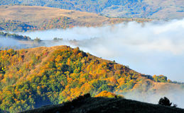 Paisagem colorida da montanha da floresta do outono Foto de Stock Royalty Free