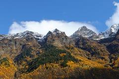 Paisagem colorida da montanha do outono Imagens de Stock