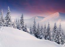 Paisagem colorida do inverno Fotos de Stock