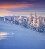 Paisagem colorida do inverno nas montanhas Fotografia de Stock