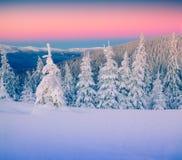 Paisagem colorida do inverno nas montanhas Imagens de Stock Royalty Free