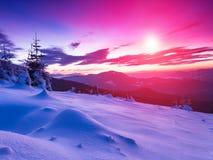 Paisagem colorida do inverno nas montanhas Vista de árvores cobertos de neve das coníferas no por do sol Imagens de Stock Royalty Free