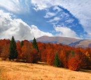 Paisagem colorida do outono Foto de Stock