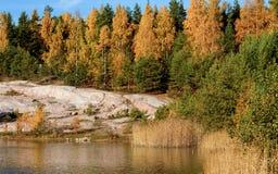 Paisagem colorida do outono Fotos de Stock Royalty Free