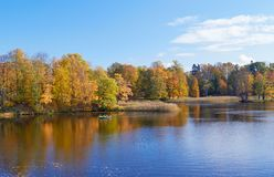 Paisagem colorida do outono com folhas de queda Dia de outubro no parque de Pavlovsk, StPetersburg, Rússia Fotos de Stock