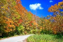 A paisagem colorida do outono em Nyuto onsen recursos da mola quente fotografia de stock royalty free