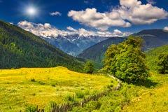 Paisagem colorida do verão nas montanhas. Fotos de Stock Royalty Free