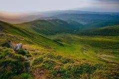 Paisagem colorida do verão nas montanhas Carpathian Superfície de pedra Foto de Stock Royalty Free