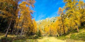 Paisagem colorida em cumes italianos, dolomite do outono, Itália, Europa imagem de stock