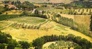 Paisagem colorida maravilhosa de Toscana na luz solar Imagens de Stock