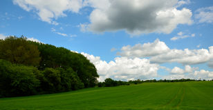 Paisagem com árvores e nuvens Fotos de Stock Royalty Free