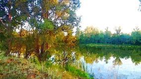 Paisagem com árvores e um lago nas madeiras no verão ilustração do vetor