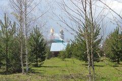 Paisagem com árvores, igreja e construções Fotografia de Stock